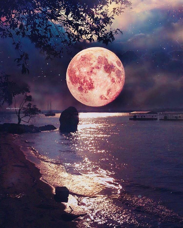 【🌕緊急告知‼️✨無料✨牡羊座の満月♈️幸波動スペシャルワンネスヒーリング✨】を10月2日に行います💕